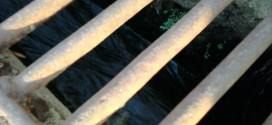 Prefeitura desperdiça água em Ribeirão Bonito