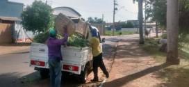 Prefeitura de Boa Esperança do Sul realiza limpeza pública e pintura de guias