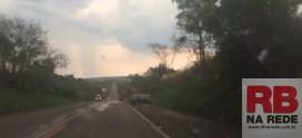 Árvores caem na SP-215 em Ribeirão Bonito